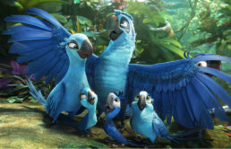 RIO2 Animation Explained